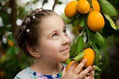 五颜六色的礼服的美丽的矮小的愉快的女孩在柠檬庭院采摘在她的篮子的Lemonarium里新鲜的成熟柠檬 免版税库存图片