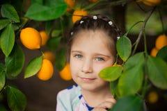 五颜六色的礼服的美丽的矮小的愉快的女孩在柠檬庭院采摘在她的篮子的Lemonarium里新鲜的成熟柠檬 免版税库存照片