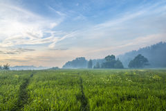 五颜六色的神仙的夏天风景 图库摄影