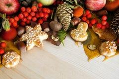 五颜六色的秋叶、蘑菇、野玫瑰果、花楸浆果、苹果、坚果、锥体和曲奇饼在木背景 库存照片