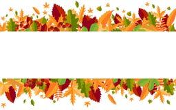五颜六色的秋叶和莓果横幅  向量 库存照片