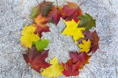 五颜六色的秋叶美丽的花圈  库存照片