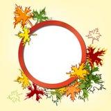 五颜六色的秋叶背景传染媒介 免版税图库摄影