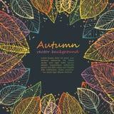 五颜六色的秋叶边界框架 免版税库存照片