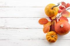 五颜六色的秋天南瓜和叶子秋天背景  库存照片
