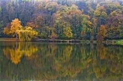 五颜六色的秋天反射 免版税库存图片