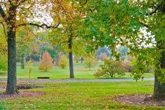 五颜六色的秋天在公园 库存图片