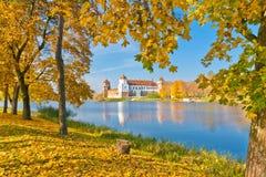 五颜六色的秋天在白俄罗斯 库存照片