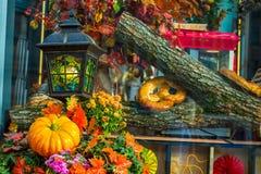 五颜六色的秋天在莫斯科市,俄罗斯 免版税图库摄影