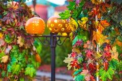 五颜六色的秋天在莫斯科市,俄罗斯 库存图片
