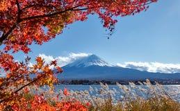 五颜六色的秋天季节和山与雪的富士加盖了峰顶,并且在湖Kawaguchiko的红色叶子是其中一个最佳的地方在Jap 免版税库存图片