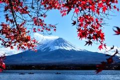 五颜六色的秋天季节和山与雪的富士加盖了峰顶,并且在湖Kawaguchiko的红色叶子是其中一个最佳的地方在Jap 库存照片