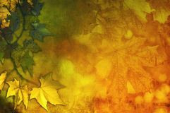 五颜六色的秋天摘要 皇族释放例证