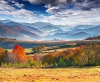五颜六色的秋天早晨;在山。 免版税库存照片