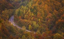 五颜六色的秋天森林公路 免版税库存图片