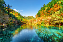 五颜六色的秋天森林在五Flower湖反射了 库存照片