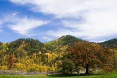 五颜六色的秋天横向 免版税库存图片