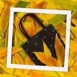 五颜六色的秋天秋天离开与购物袋在白色框架 库存照片
