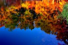 五颜六色的秋天结构树的反映在镇静湖 图库摄影