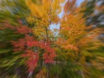 五颜六色的秋天背景 库存图片