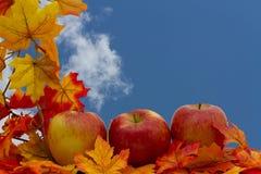 五颜六色的秋天边界 库存照片