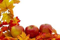 五颜六色的秋天边界 库存图片