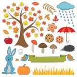 五颜六色的秋天集合 免版税库存照片