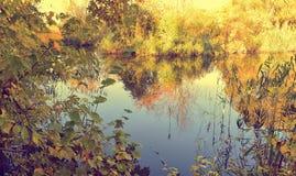五颜六色的秋天风景在与树的一个晴天与水和云彩 免版税图库摄影