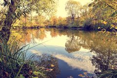 五颜六色的秋天风景在与树的一个晴天与水和云彩 库存照片