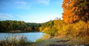 五颜六色的秋天风景在与树的一个晴天与水和云彩 免版税库存图片