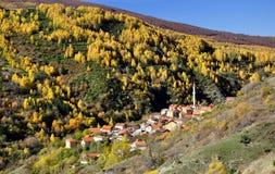 五颜六色的秋天风景在山村 免版税库存照片