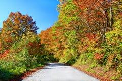 五颜六色的秋天风景在Nyuto onsen温泉手段 库存图片