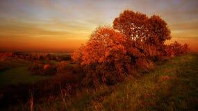 五颜六色的秋天风景场面 库存照片