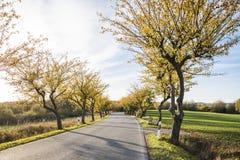 五颜六色的秋天风景 图库摄影