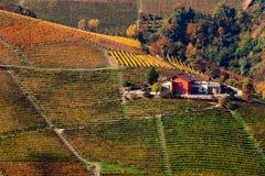 五颜六色的秋季小山和葡萄园在意大利 免版税库存图片