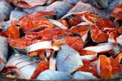五颜六色的红色切片鱼,信武里,泰国 免版税库存照片