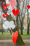 五颜六色的红色和白色心脏,垂悬从在一棵树的一条绳索在象征幸福和爱的公园在利沃夫州,乌克兰 免版税图库摄影