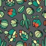 五颜六色的红色和绿色仙人掌和多汁植物在黑概述 库存例证