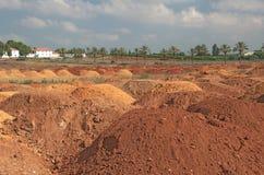 五颜六色的红色土壤沙丘在以色列 免版税库存图片