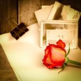 红色玫瑰、葡萄酒乌贼属照片和老纸 免版税库存照片