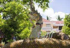 五颜六色的纳卡人蛇雕象 免版税库存照片