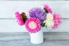 五颜六色的翠菊花束 库存照片