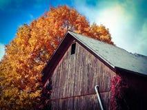 五颜六色的老谷仓 库存图片