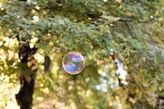 五颜六色的肥皂泡在天空中 免版税库存照片
