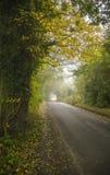 五颜六色的背景由下落的秋叶做成 免版税图库摄影