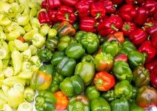 五颜六色的胡椒绿化黄色红色 免版税图库摄影