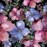 五颜六色的胡麻 花卉植物的花 无缝的背景模式 织品墙纸印刷品纹理 图库摄影