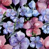 五颜六色的胡麻 花卉植物的花 无缝的背景模式 织品墙纸印刷品纹理 库存图片