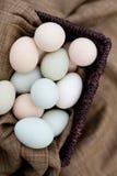 五颜六色的自由放养的有机鸡蛋 免版税库存照片