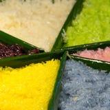 五颜六色的芒果和黏米饭 库存图片